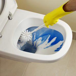 Чем мыть унитаз при септике с бактериями?